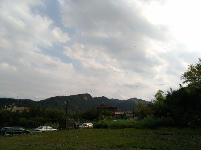 05_29.jpg